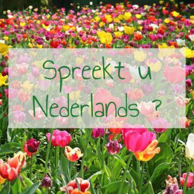 Apprendre le néerlandais