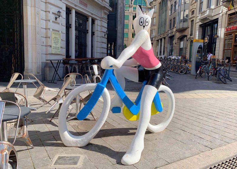 Chat à bicyclette Bruxelles